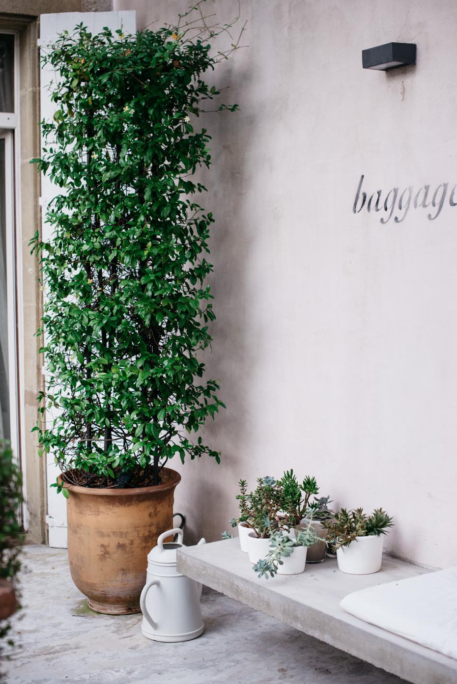 una collezione di piante grasse incornicia la seduta del terrazzo