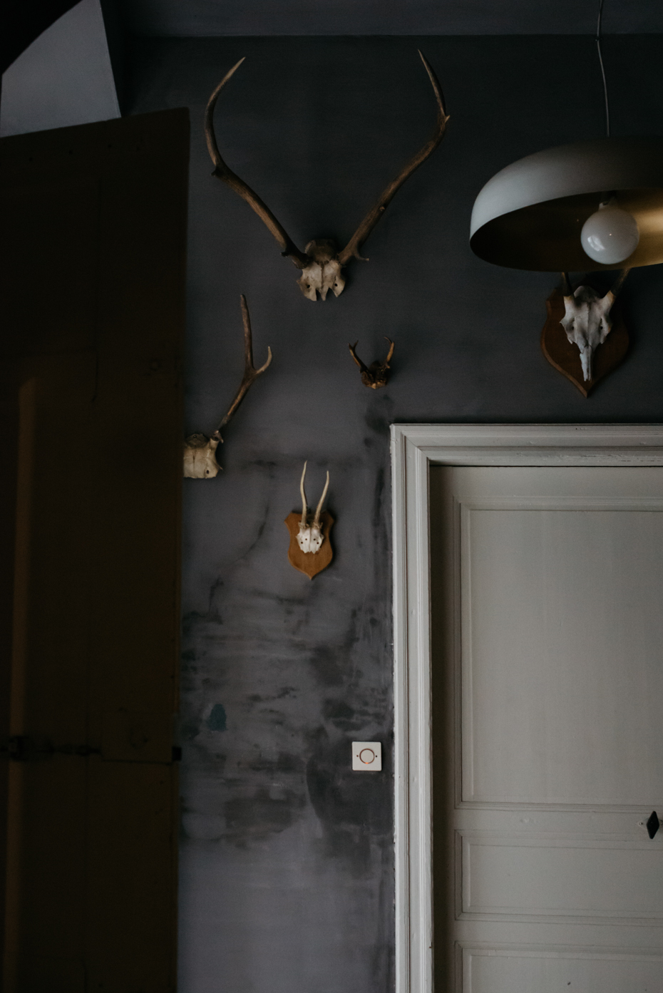 Una zona priva di luce è stata enfatizzata con la tinteggiatura scura e la collezione di corna.