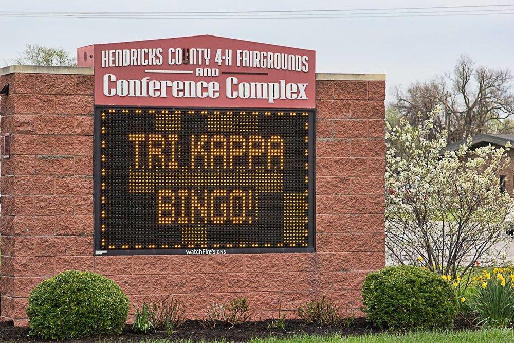 Bingo Fun!