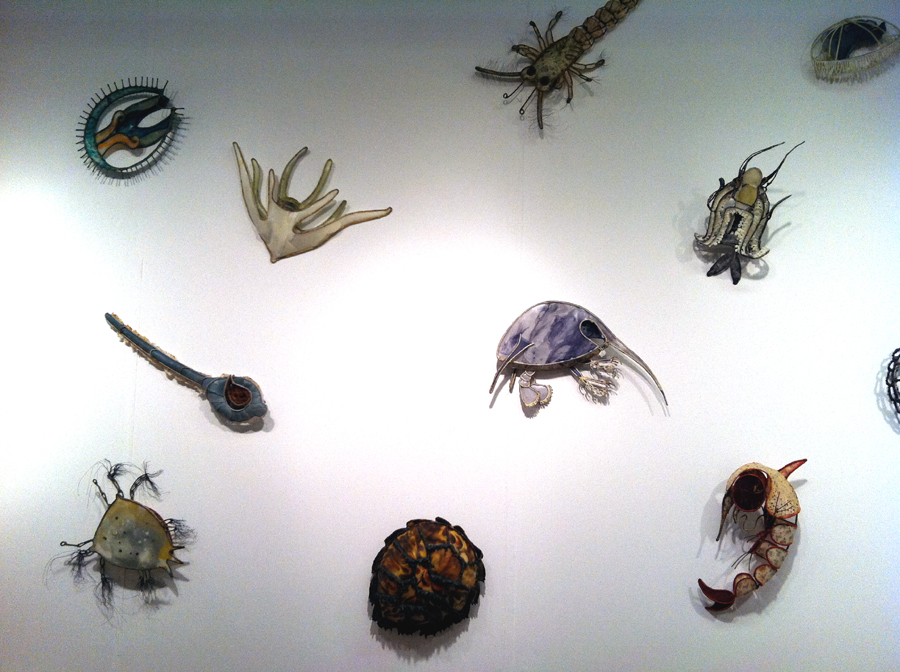 Christy Rupp, Filter Feeders Installation View, 2014