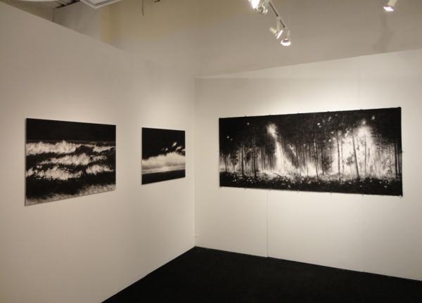 296_booth-frederieke-taylor-gallery-volta-2012-a.jpg