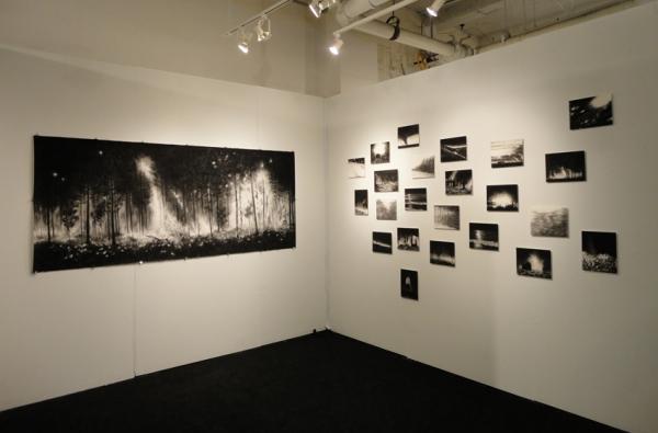 296_booth-frederieke-taylor-gallery-volta-2012-i.jpg
