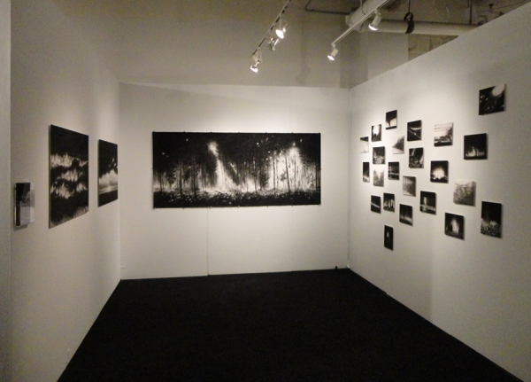 296_booth-frederieke-taylor-gallery-volta-2012-b.jpg