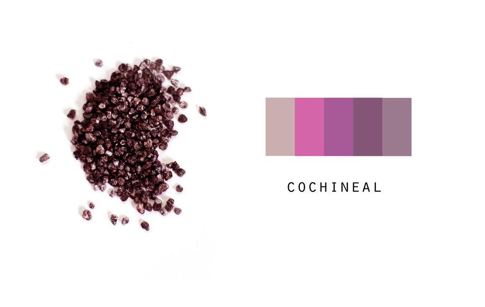 cochineal.jpg