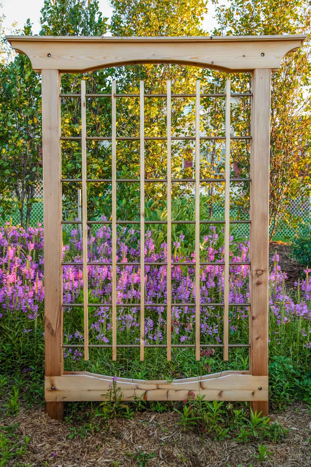 Backyard Trellis