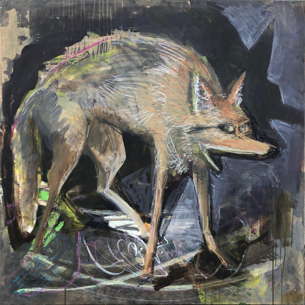 """""""Coyote"""" 2018"""