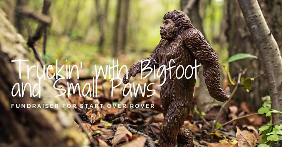 bigfoot_ford_paws.jpg