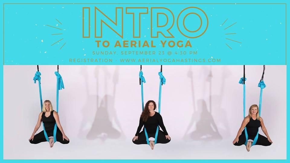 aerial_yoga_tdance.jpg