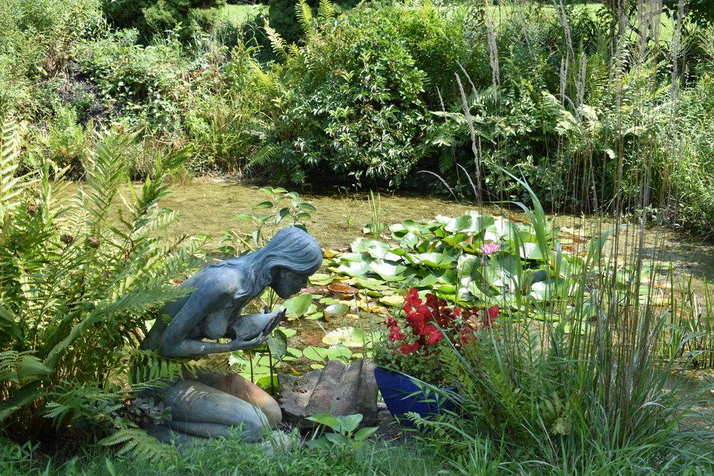 Garden photo for FB and website.JPG