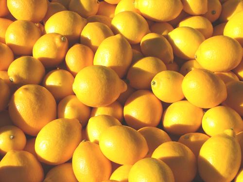 Meyer lemons.jpg