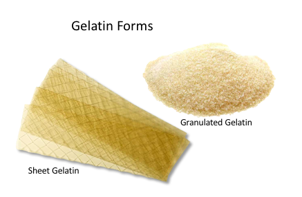 Gelatin Forms.png