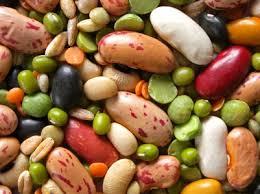 Dried Legumes - Handling & Storage