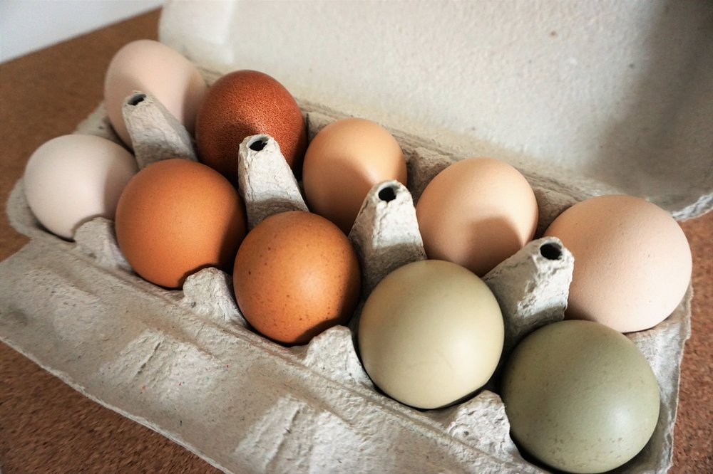 Heirloom Eggs -