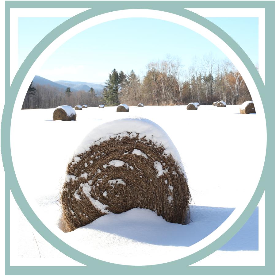 round_hay_bale_snow_vermont.jpg