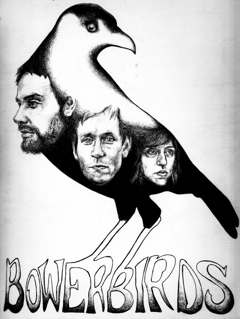 Bowerbirds March 2012, bic pen & sharpie