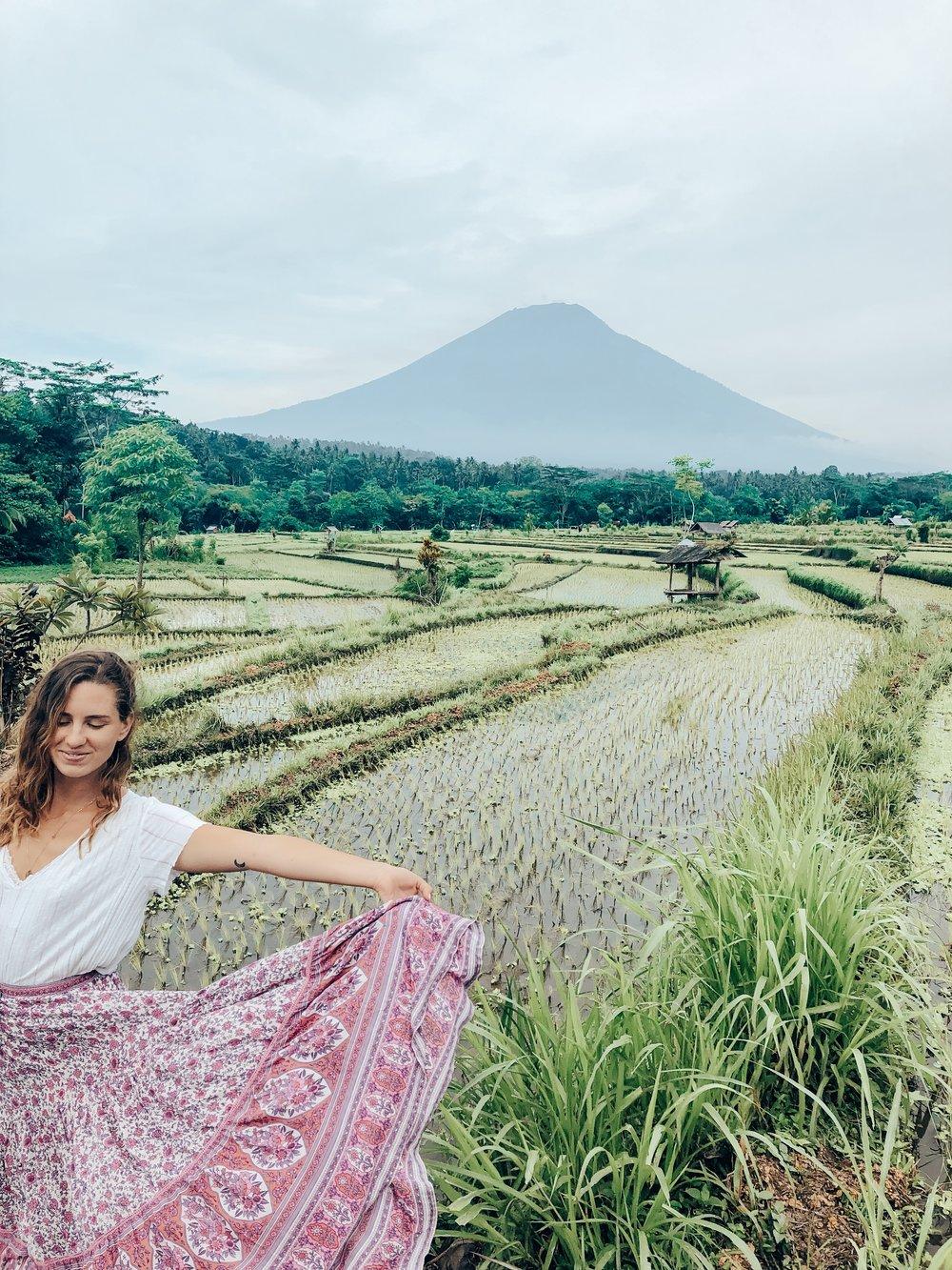 Rice Fields, Tirta Gangga Area