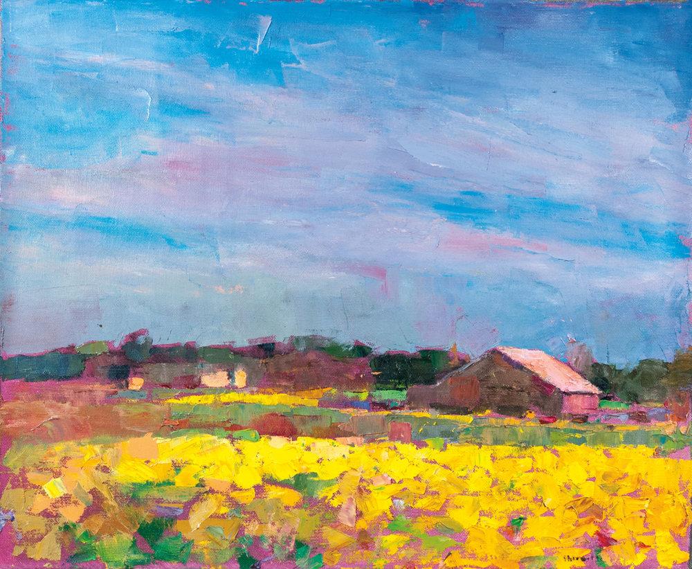 Mustard Fields, Grand Island, Oil on Canvas, 23 x 28 in (52 x 63 cm), 2016