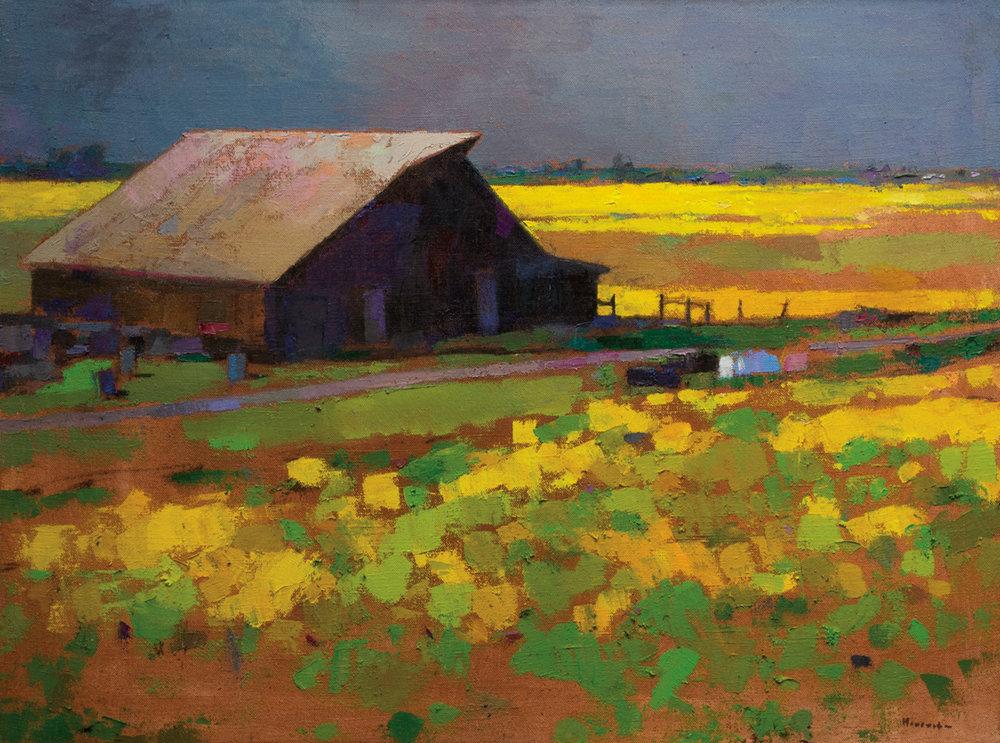 Barn in the Mustard Fields, Oil on Canvas, 36 x 48 in (81 x 108 cm), 2016