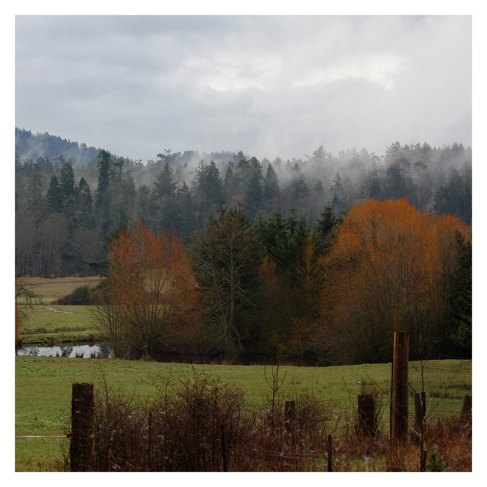 farm_06.jpg