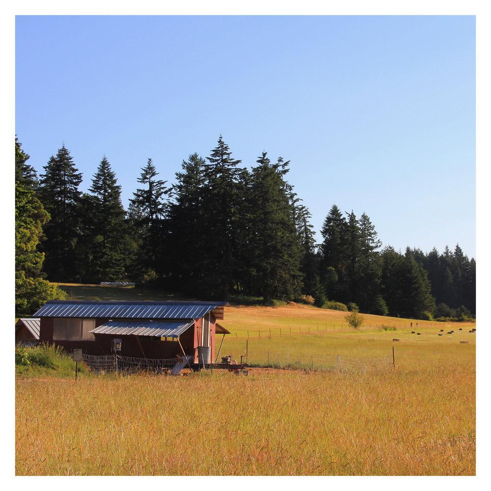 farm_08.jpg