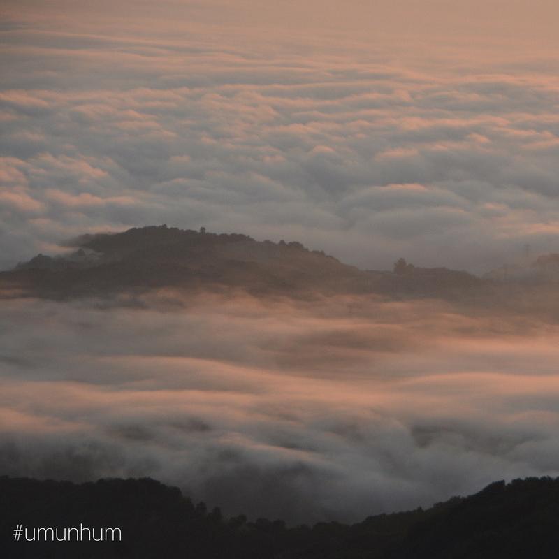 #umunhum_fog.png