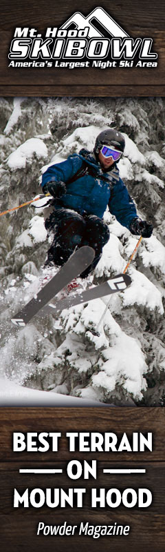 skibowl-banner.240x800.jpg