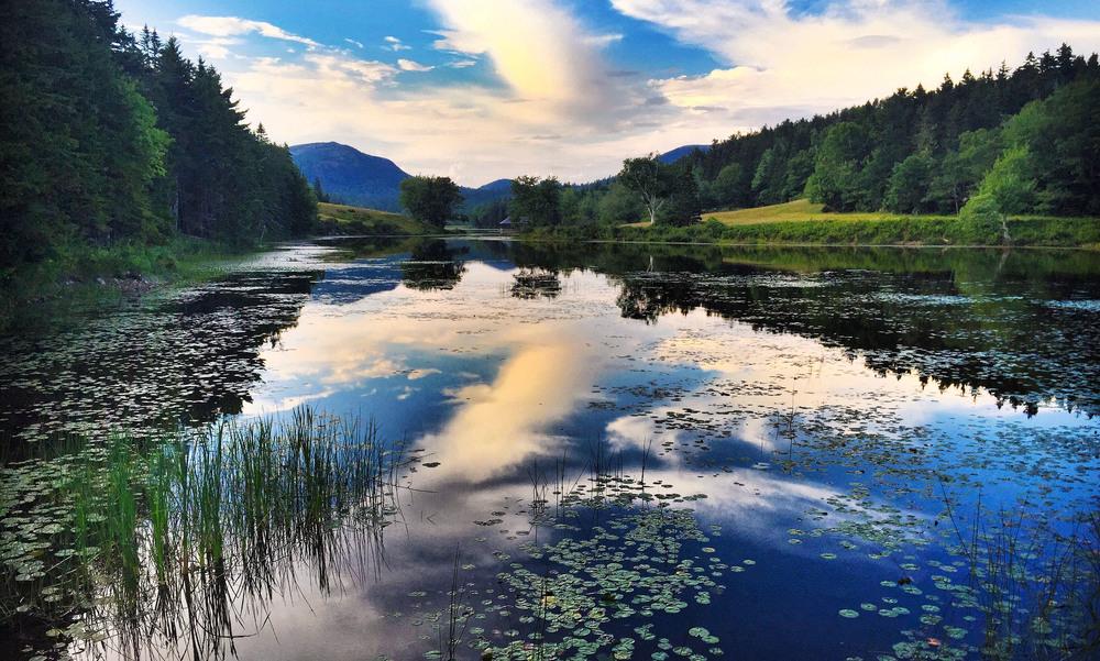 Little Long Pond.jpg