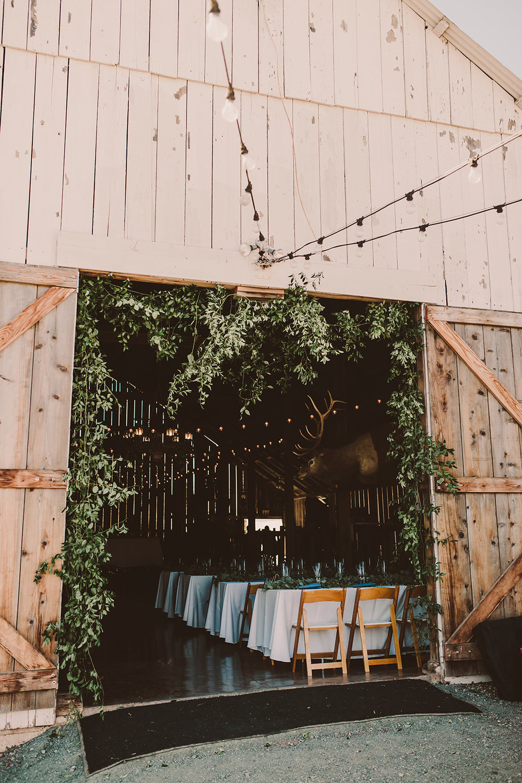 champness-wedding-137.jpg