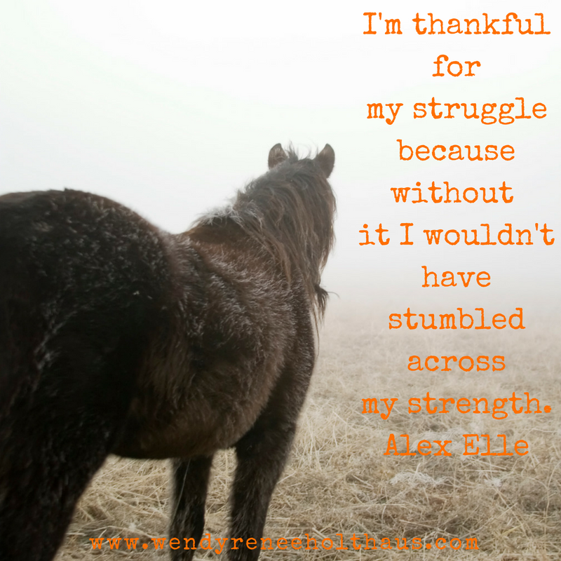 10-11-16 quote- I'm thankful formy strugglebecause without it I wouldn't havestumbled acrossmy strength (1).png