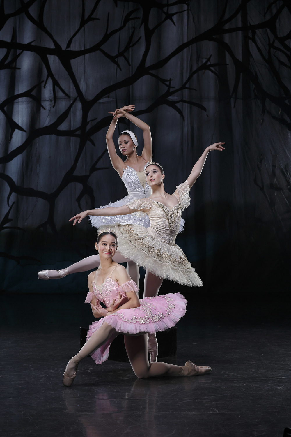 The most romantic ballets take center stage in    The Swan, The Fairy and The Princess    with (from top) soloist Abigail Oliveiro, and principal dancers Katherine Barkman and Dawna Mangahas.