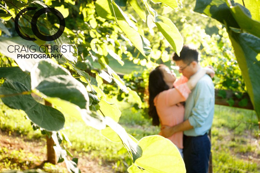 Mcdaniel-farm-park-duluth-atlanta-skyline-engagement-portraits-20-of-29.jpg