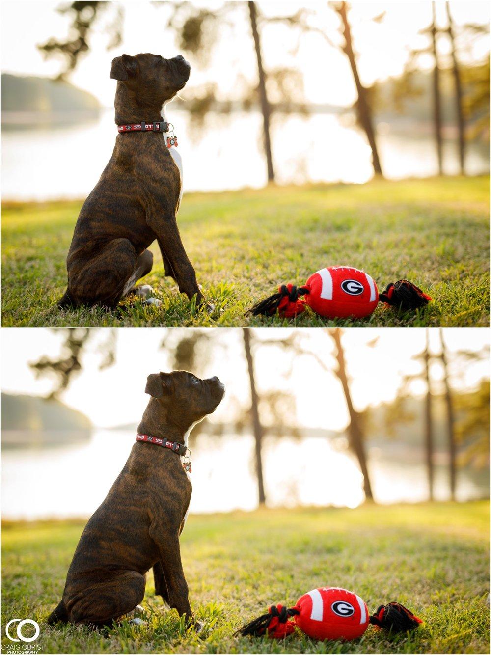 Lake Lanier Family Portraits Dog_0009.jpg