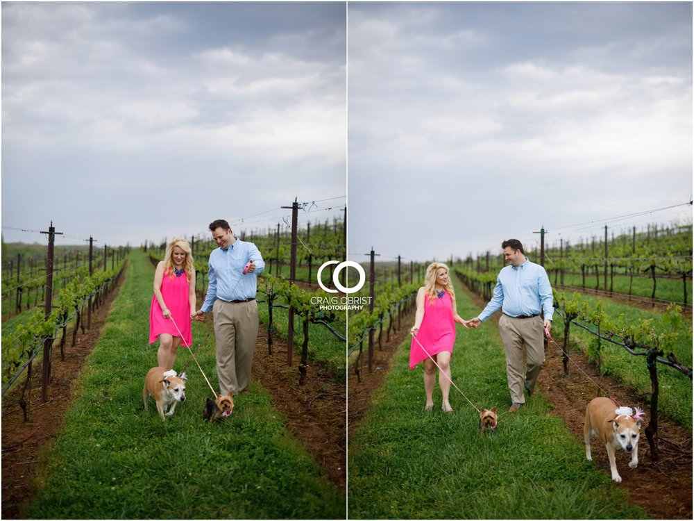 Yonah Mountain Engagement Portraits Wine_0007.jpg