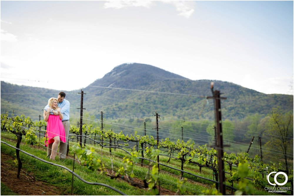 Yonah Mountain Engagement Portraits Wine_0017.jpg