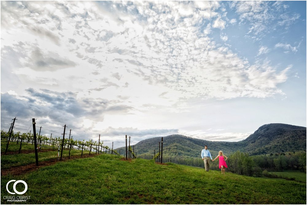 Yonah Mountain Engagement Portraits Wine_0021.jpg