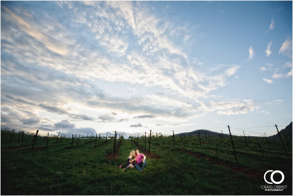 Yonah Mountain Engagement Portraits Wine_0028.jpg
