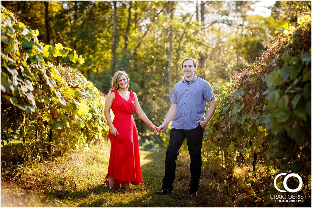 sunflowers fields north georgia engagement portraits wine vineyard_0008.jpg