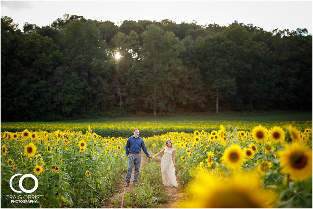 sunflowers fields north georgia engagement portraits wine vineyard_0028.jpg