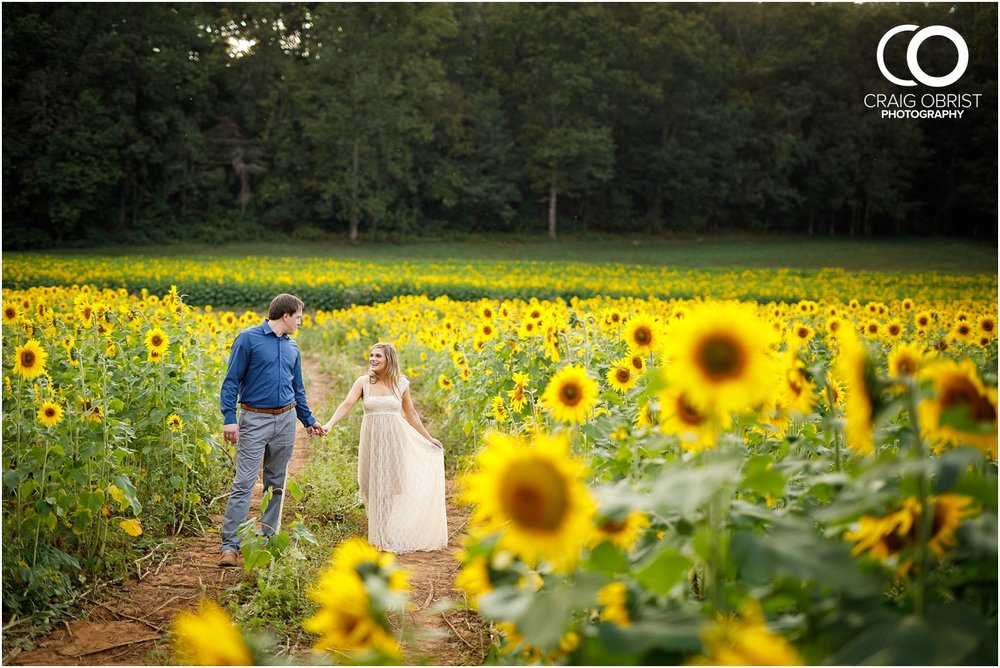 sunflowers fields north georgia engagement portraits wine vineyard_0030.jpg