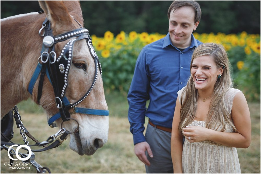 sunflowers fields north georgia engagement portraits wine vineyard_0039.jpg