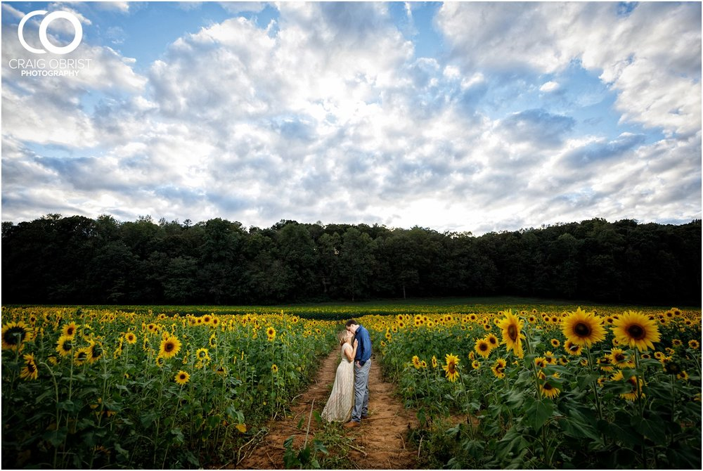 sunflowers fields north georgia engagement portraits wine vineyard_0034.jpg