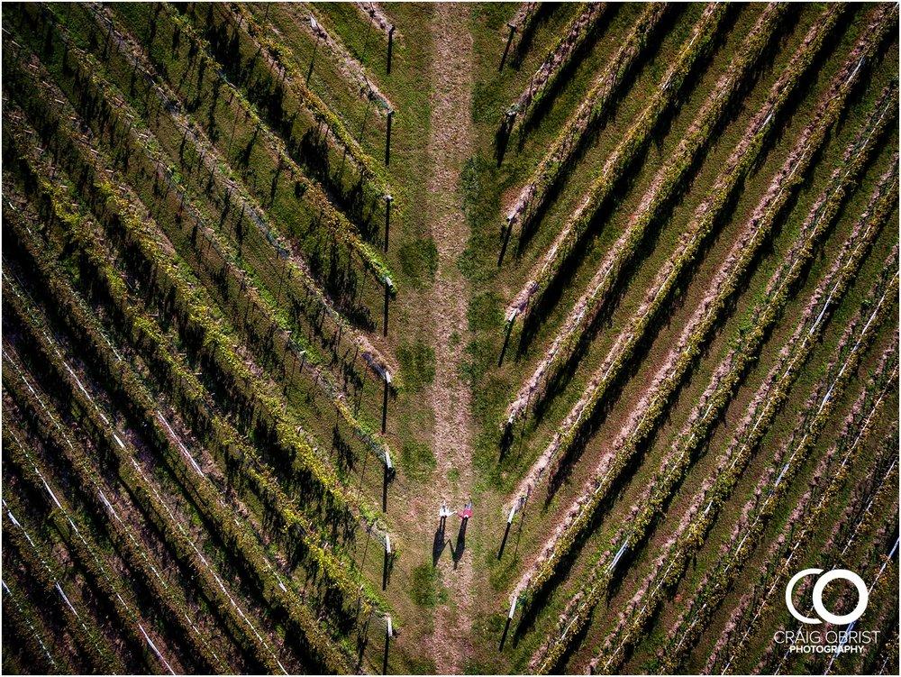 Montaluce Winery Vineyard Georgia Engagement Portraits_0012.jpg
