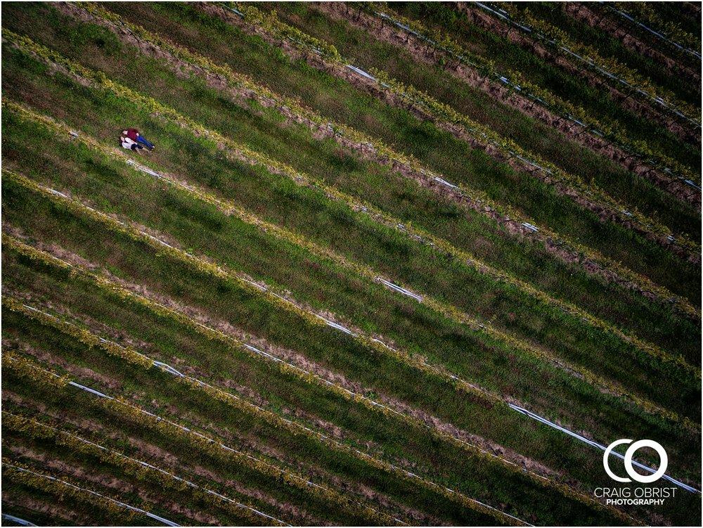 Montaluce Winery Vineyard Georgia Engagement Portraits_0014.jpg