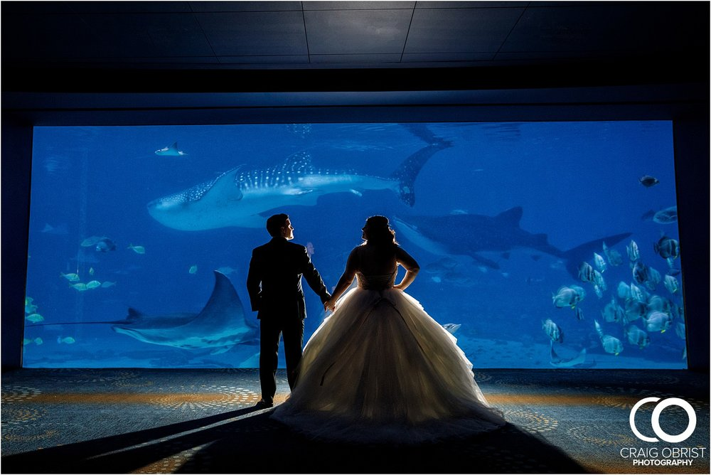 Georgia Aquarium Wedding Portraits Whale_0014.jpg