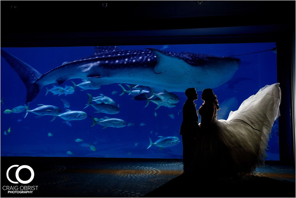 Georgia Aquarium Wedding Portraits Whale_0015.jpg