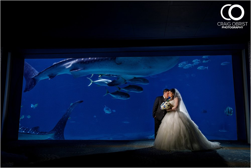 Georgia Aquarium Wedding Portraits Whale_0017.jpg