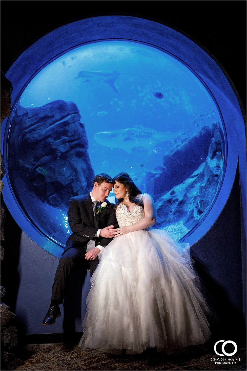 Georgia Aquarium Wedding Portraits Whale_0051.jpg