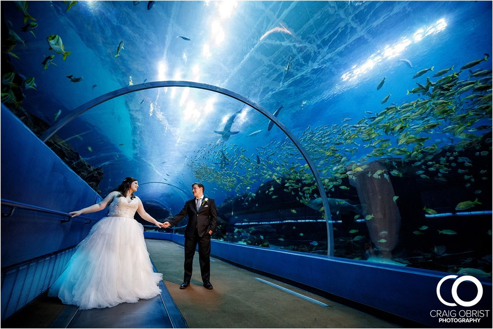 Georgia Aquarium Wedding Portraits Whale_0056.jpg