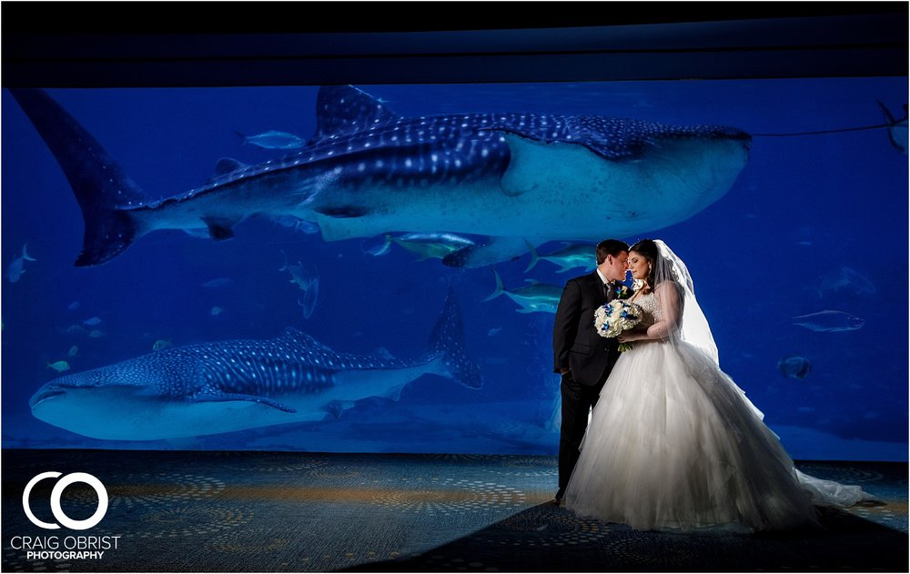 Georgia Aquarium Wedding Portraits Whale_0016.jpg