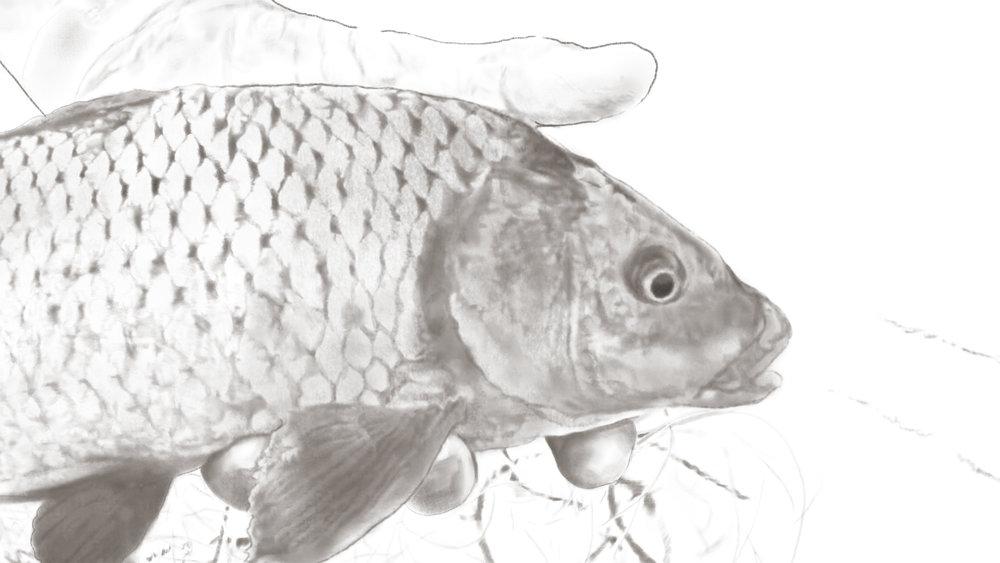 FISHERMAN DETAIL.jpg